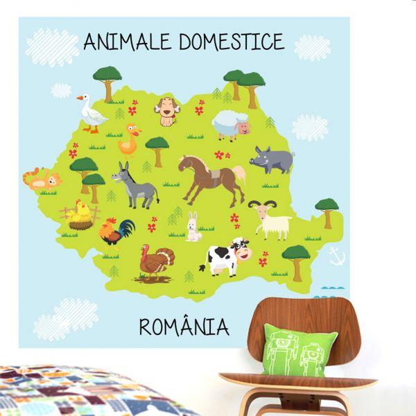 Fototapet Animale Domestice - 100 x 100 cm imagine