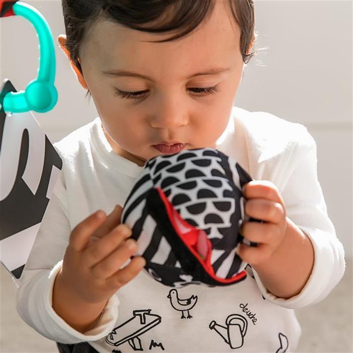 Baby Einstein - 11398 Salteluta de activitati Bold New World