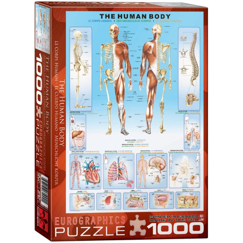 Puzzle 1000 piese The Human Body