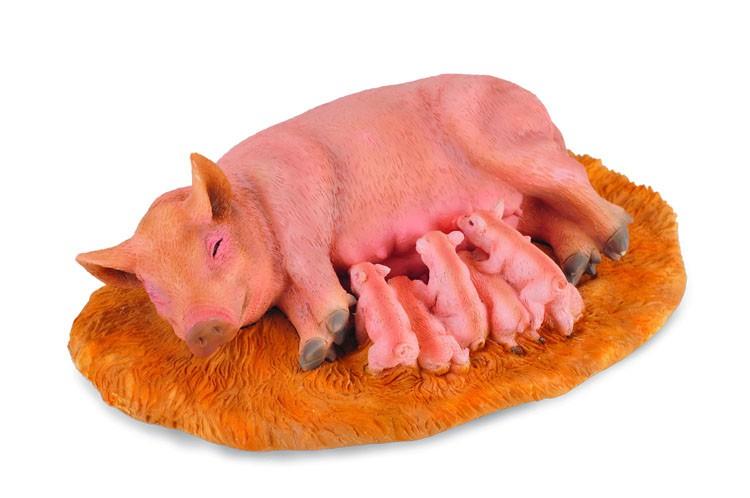 Familie de porci - Collecta