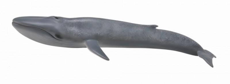 Balena Albastra - Collecta