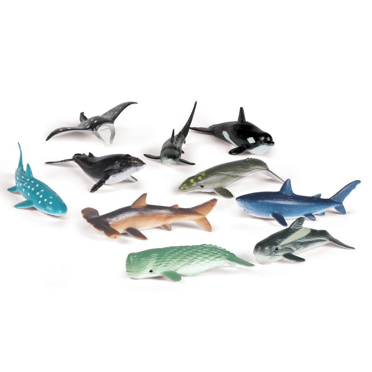 Set de sortat - Animalute din ocean imagine
