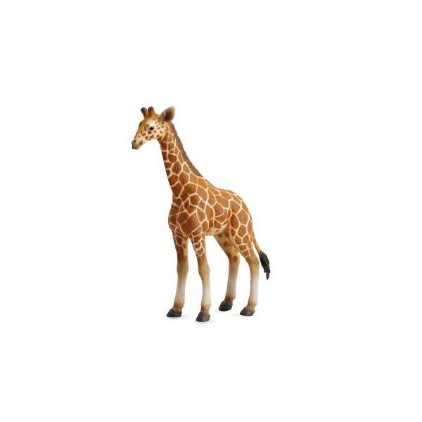 Figurina Pui de Girafa L Collecta