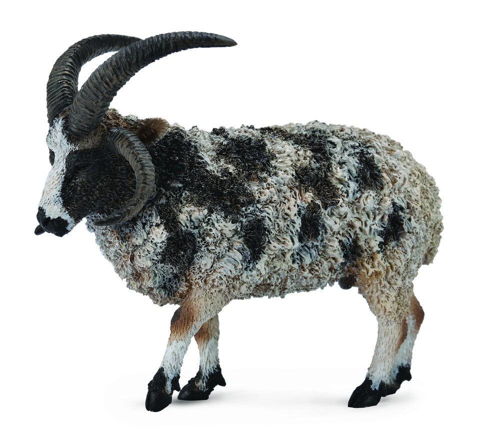 Figurina Jacob Sheep L Collecta
