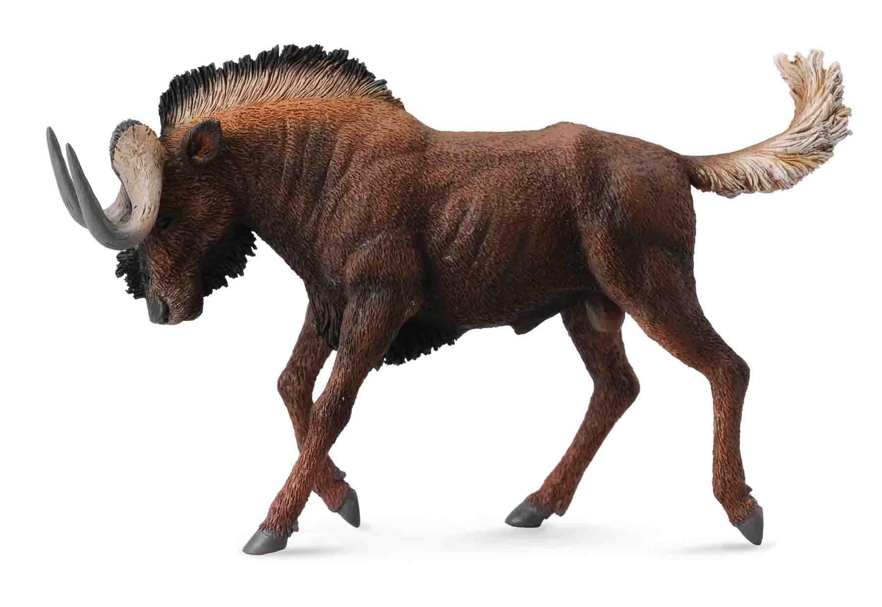 Antilopa Gnu Neagra Collecta