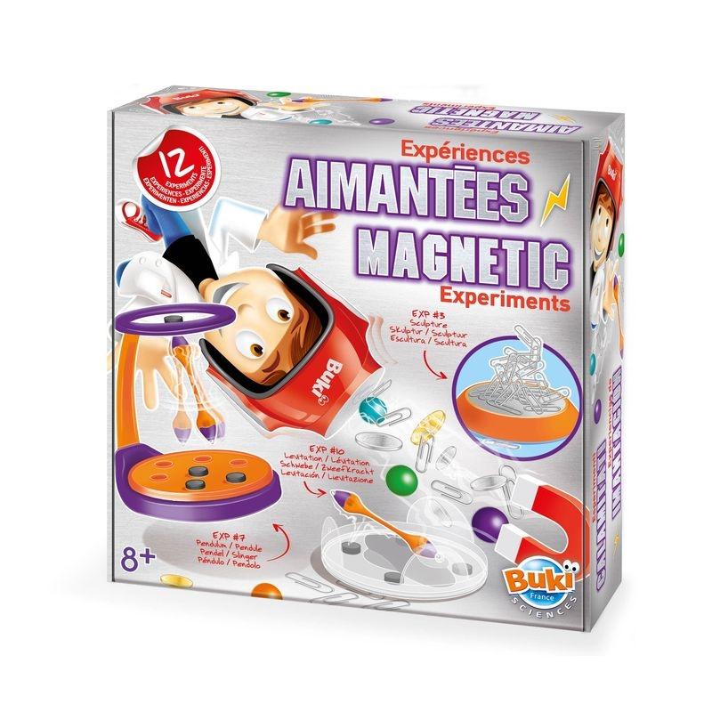 Experimente magnetice imagine